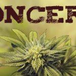 Marijuana Harmful to Children's Developing Brains