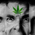 Marijuana and Schizophrenia