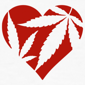 Smoking Marijuana Increases Heart Attack Risk