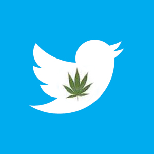 Young Adults Consistently Receive Pro-Cannabis Tweets
