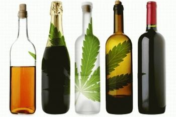 Marijuana and Alcohol - Both Bad in Different Ways