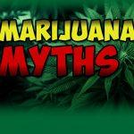 3 Myths About Teen Marijuana Busted